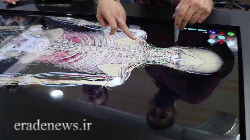 گشت و گذاری در هفتمین نمایشگاه رینوتکس تبریز