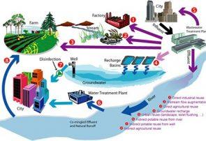 بومیسازی فناوری نمک زدایی آب دریا دریا برای گلخانه دریایی