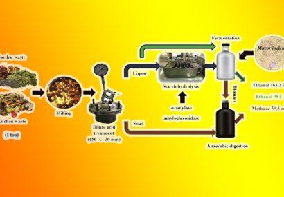 تولید الکل از پسماند کارخانجات صنایع غذایی