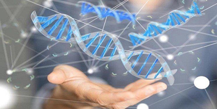 دومین فراخوان حمایت از کسب و کارهای دادههای زیستی