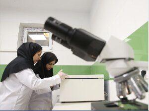 فراخوان صندوق نوآوری برای حمایت از ساخت محصولات دانشبنیان جدید دارای بهرهبردار