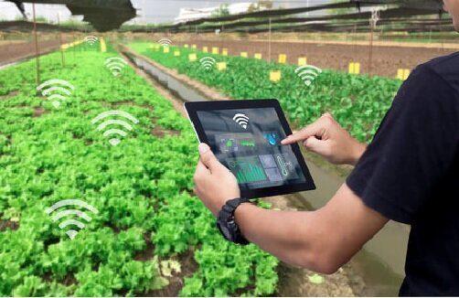 راه اندازی نخستین مرکز نوآوری حوزه کشاورزی «آی تک»