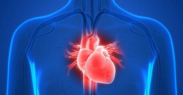 بومیسازی دستگاه سنجش فعالیت قلب توسط یک شرکت دانش بنیان
