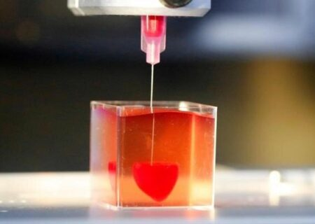 برای تولید دام ؛ ایران انحصار آمریکا را در تولید کیت جنینهای آزمایشگاهی شکست