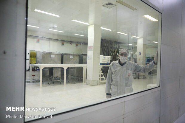 توسط محققان کشور صورت گرفت؛ تولید دستگاه تصفیه و ضدعفونیکننده هوا مبتنی بر پلاسمای سرد